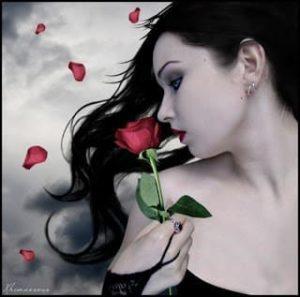 صورةوصف حب عن الوردة في بستاني الجميل