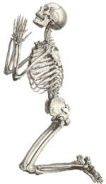 شبح The begging skeleton