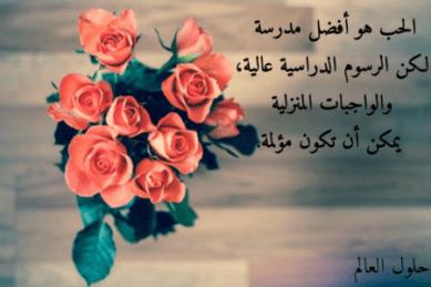 عبارات عن الحب - أجمل كلمات عن الحب