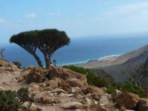 جزيرة سقطرى- حلول العالم