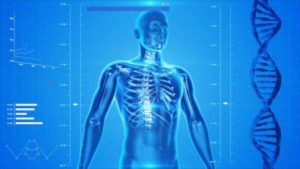 هشاشة العظام - حلول العالم