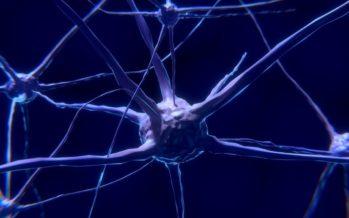 التصلب اللويحي تعريفه والأسباب والأعراض