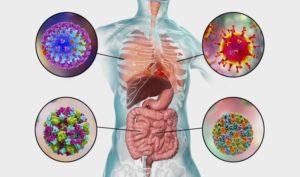 مهاجمة فيروس كورونا
