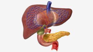 صورة توضيحة عن مرض التهاب الكبد