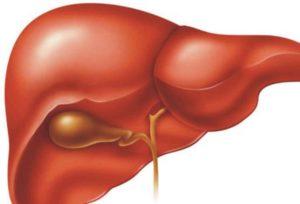 مرض سرطان الكبد