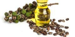 فوائد زيت الخروع Castr oil